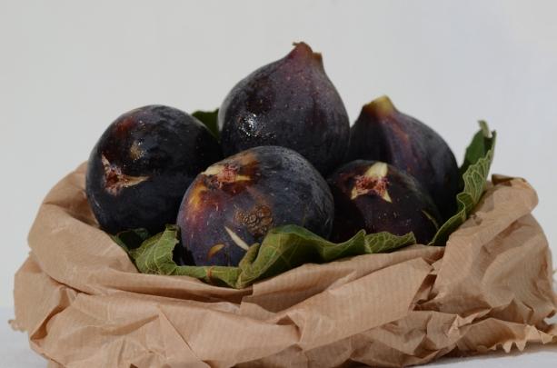 black.figs001