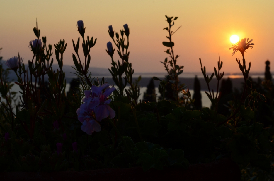 sunset.ansedonia001