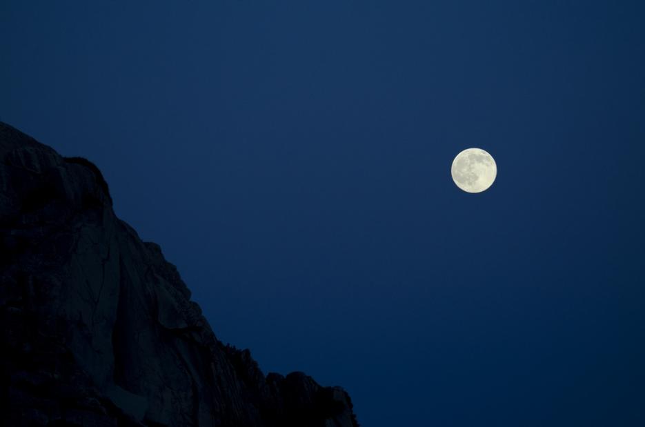 moon.blue.myrtlet001